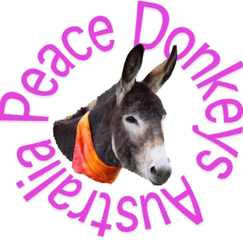 Peace Donkeys